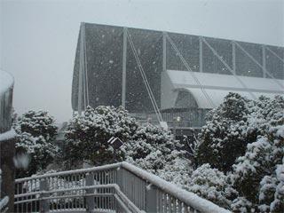 雪の幕張WHF